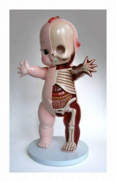anatomia dei giocattoli