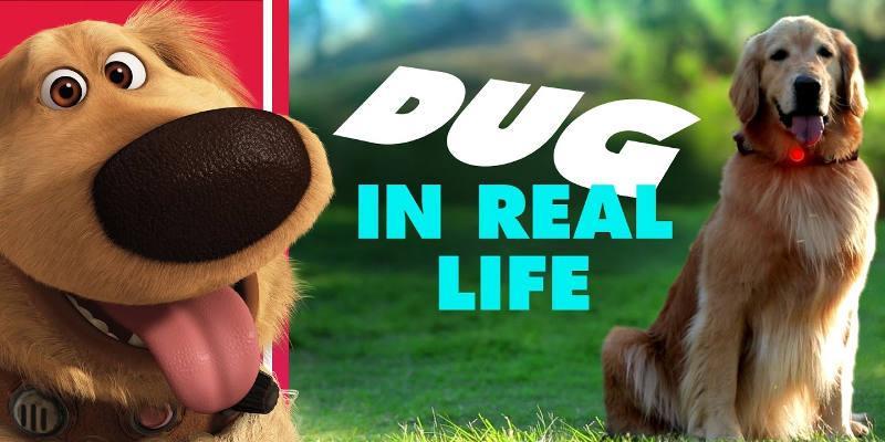 Dug cane parlante Up