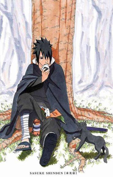 romanzo di Sasuke