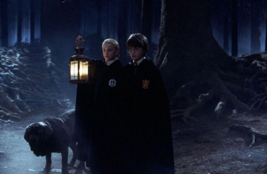 Foresta Proibita di Harry Potter
