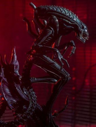 Alien Warrior Sideshow Collectibles