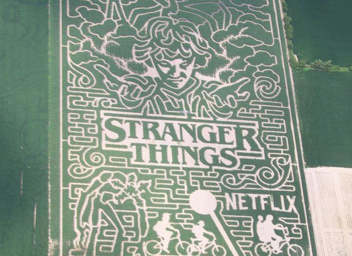 Cerchio nel grano di Stranger Things