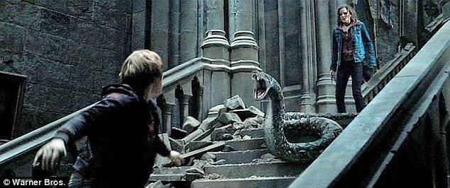 nagini-harry-potter-hogwarts