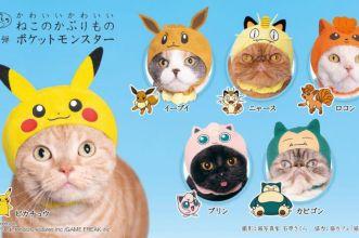 cappelli pokémon per gatti