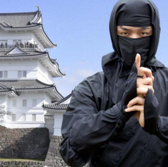 ninja experience Castello di Odawara