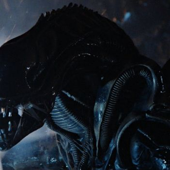 Alien Warrior Xenomorfo