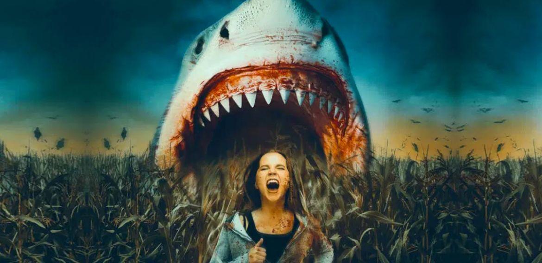 shark of the corn